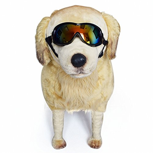Anti uv Double-layer Lens in one dog sunglasses medium wind proof large puppy goggle fog proof dog eyewear protection scratch proof safety glasses waterproof sunglass case - Ok Sunglasses