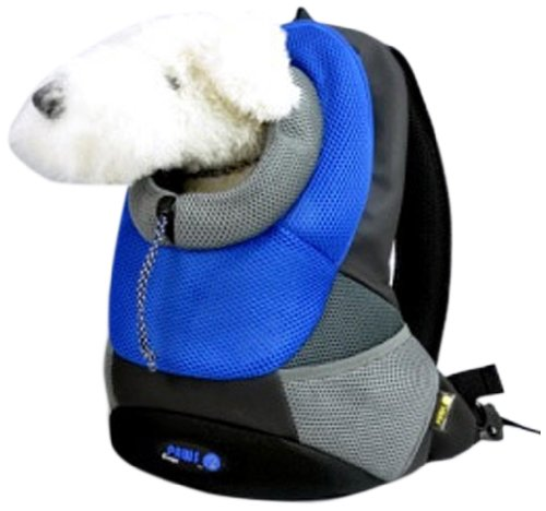 bluee Small bluee Small Crazy Paws Backpack, Small, 3 Kg, bluee