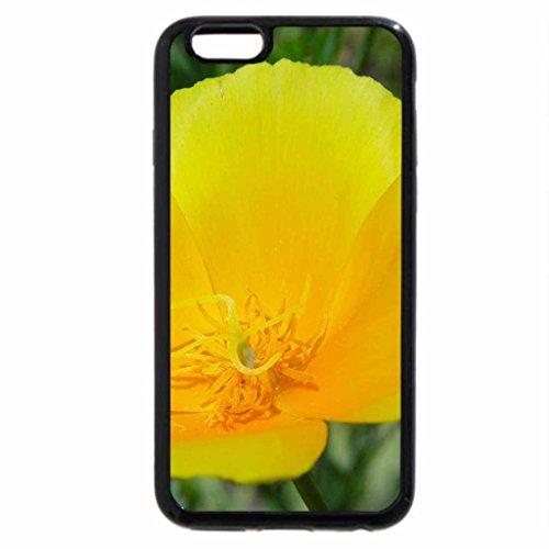 iPhone 6S / iPhone 6 Case (Black) Yellow Poppy