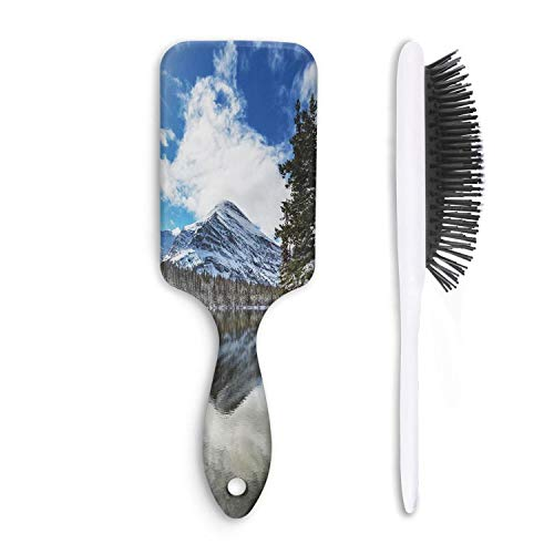 HairBest Montana Funny Paddle Hairbrush Plastic Detangling Brushes Great On Wet Or Dry Hair For Women Men Kids Stimulate Scalp Help Growth Add Hair Shine