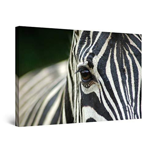 STARTONIGHT Canvas Wall Art - Black and White Zebra Animals, Framed Wall Decor 24