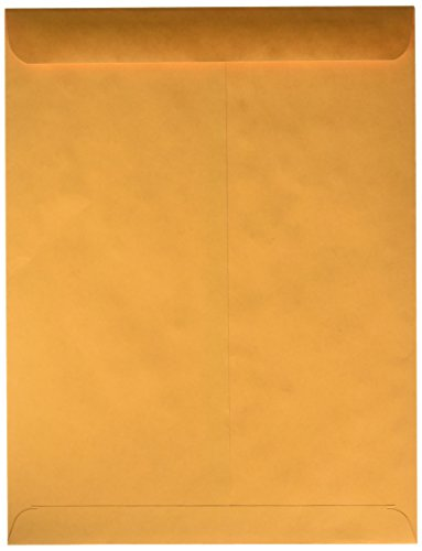 Quality Park 41665 Quality Park Catalog Envelopes, Heavyweight/Gummed, 10x13, 28lb, Kraft, 250/Box (Quality Park Gummed Kraft Paper)