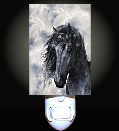 Equine Gift - 6