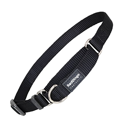 Red Dingo Classic Martingale Dog Collar, Small, Black