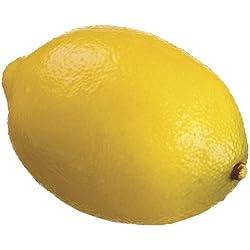 Silk Plants Direct Lemon (Pack of 6)