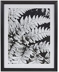 MARTHA STEWART Ostrich Fern I Wall Art Living Room Black and White Canvas Home Accent Country Lifestyle Bathroom Decoration