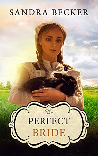 Pdf Spirituality The Perfect Bride (Amish Countryside Book 33)