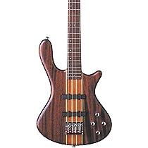 Washburn Taurus 5-String Bass (Natural Matte) with GB6 Gig Bag.