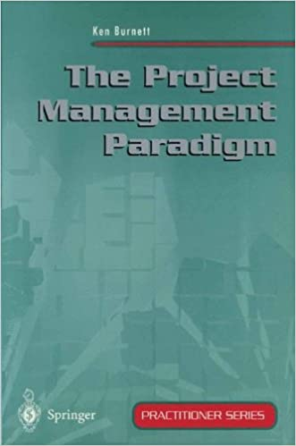 Book The Project Management Paradigm (Practitioner Series)