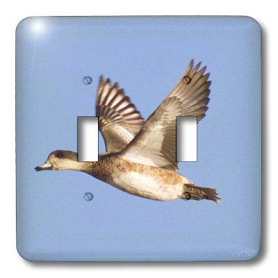Americana Duck (3dRose lsp_45756_2