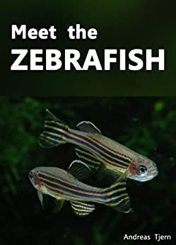 Meet the Zebrafish. A Short Guide to Keeping, Breeding and Understanding the Zebrafish (Danio rerio) in Your Home Aquarium by [Tjern, Andreas]