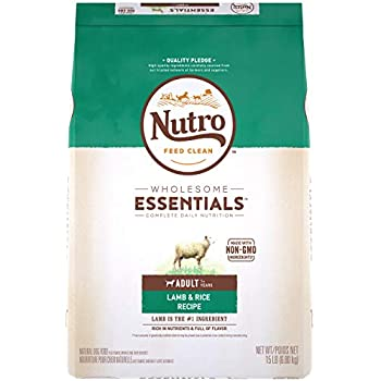 Amazon.com: NUTRO Limited Ingredient Diet Natural Small