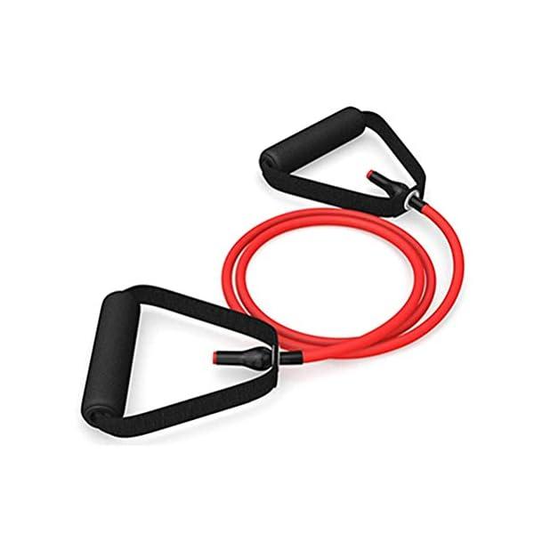 Nerplro – Bandes de résistance de fitness – Élastiques – Extenseur – Tubes de traction – Équipement de fitness accessoires de fitness [tag]