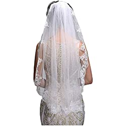 Simple Elegent Lace Appliques Wedding Veil With Bridal Veils Comb (Ivory)