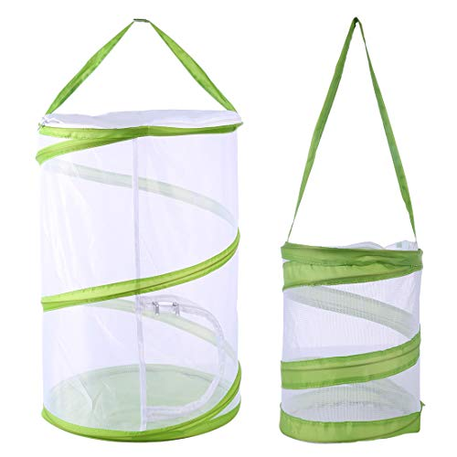 (HMANE Set of 2 Large/Small Insect and Butterfly Habitat Cage Terrarium Pop-up Plant Seeding Growth Incubator Tent Shape Transparent -)