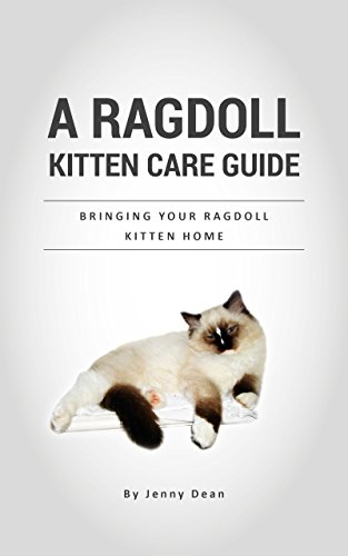 A Ragdoll Kitten Care Guide: Bringing Your Ragdoll Kitten Home (Home Care Guide)