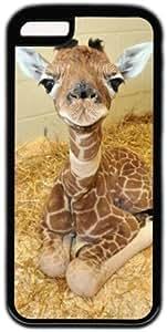 Baby Giraffe Theme Iphone 5c Case