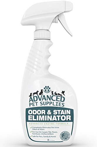 Advanced Pet Supplies Odor and Stain Eliminator - Cleans Accidents in a Hurry Without Dangerous Ingredients That Can