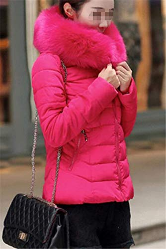 Manga Mujer Tallas con Áspera con Fit Abrigo Termica Invierno Piel Rosarot Transición Colores Largo De Espesar Acolchado Slim Retro Sólidos Cremallera Grandes Pluma Abrigos Capucha CZwUdqdp