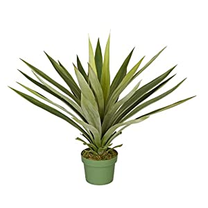 House of Silk Flowers Artificial Large Yucca Plant 4
