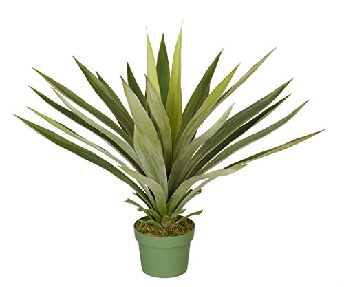 House of Silk Flowers Artificial Large Yucca Plant by House of Silk Flowers