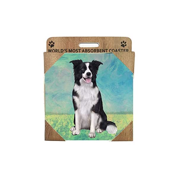 Border Collie Coasters - Moisture Absorbing Stone Coasters with Cork Base, Prevent Furniture from Dirty and Scratched, Stone Coasters set Suitable for Kinds of Mugs and Cups, Set of 4 5