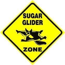 SUGAR GLIDER ZONE flying squirrel pet sign