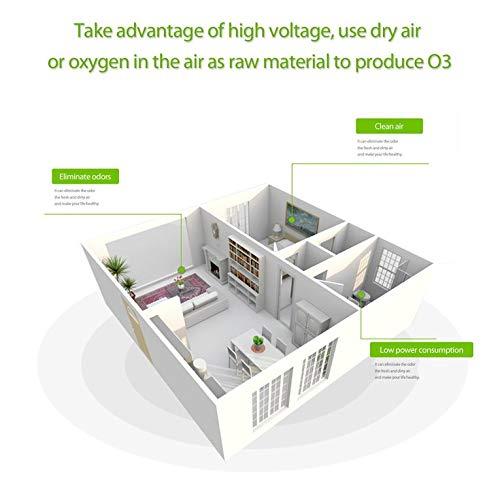 Blanco Goldyqin Generador de ozono de 10 g//h Placa de cer/ámica Doble Esterilizador Integrado Purificador de ozonizador de Aire Dispositivo de eliminaci/ón de olores DIY Plug /& Play