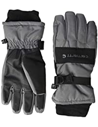 Men's W.P. Waterproof Insulated Glove