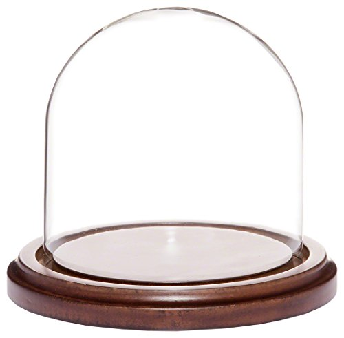 Glass Display Dome Case (Plymor Brand 4