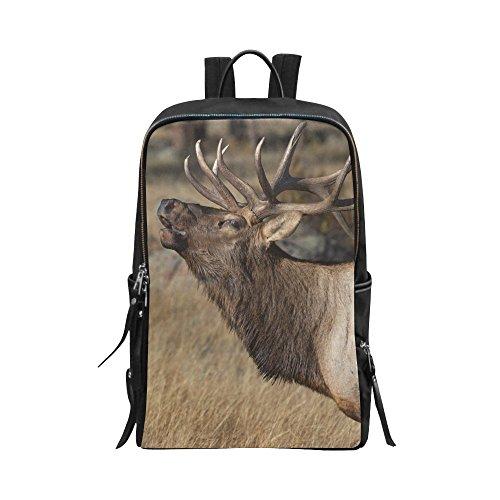 InterestPrint Deer Wilderness Elk in Rocky Mountain National Park Unisex School Bag Outdoor Casual Shoulders Backpack Travel Daypacks for Women Men Kids