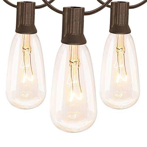 20Ft outdoor garden light string st40 global light string with transparent light bulb, (plus 1 extra light bulb) UL listed 20 piece set glass Edison light string backyard, party, pergola, porch, brown