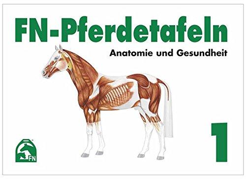 FN-Pferdetafeln Set / FN-Pferdetafeln Set 1: Anatomie und Gesundheit: Enthält Tafel 1 - 13: Fuer Pferde giftige Pflanzen - Lage erkennbarer ... Die Hufe - Der Kreislauf - Die Atmungsorgane
