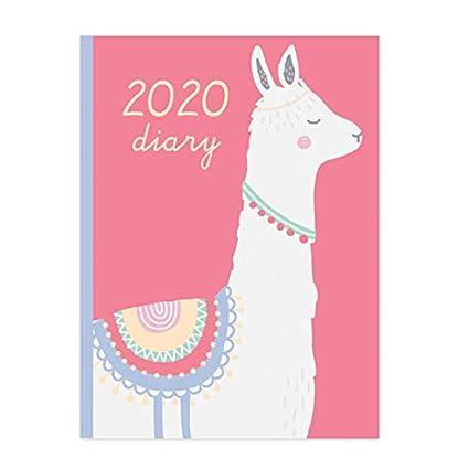 Agenda 2020 A5 LLAMA ADVENTURES: Amazon.es: Oficina y papelería