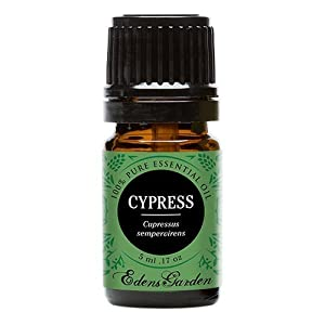 Undiluted Cypress