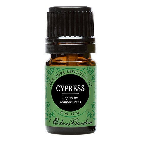 Edens Garden Cypress 5 ml 100% Pure Undiluted Therapeutic Grade Essential Oil GC/MS Tested