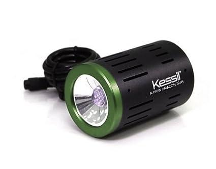 amazon com kessil a150w 6 700k amazon sun led light aquarium