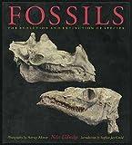 Fossils, Niles Eldridge, 0810933055