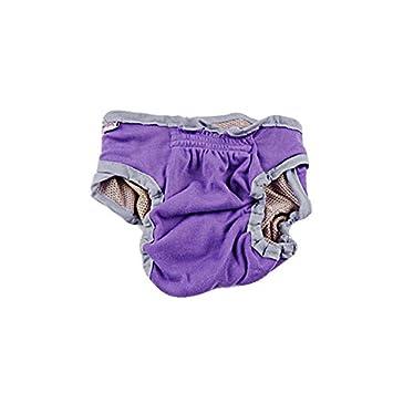 Feicuan Mascota perros Ropa interior de Higiene Nappy Bragas de Periodo Menstruación pañales para Perro Hembra