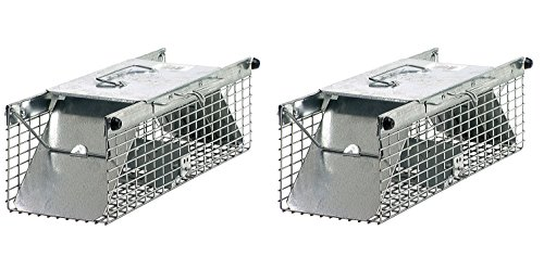 2 Animal Door Trap (Havahart 1025 Small 2-Door Live Animal Trap – Ideal for catching squirrels, chipmunks, rats, weasels (Pack of 2))