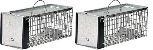 - Havahart 0745 One-Door Animal Trap for Chipmunk, Squirrel, Rat, and Weasel, X-Small (Pack of 2)