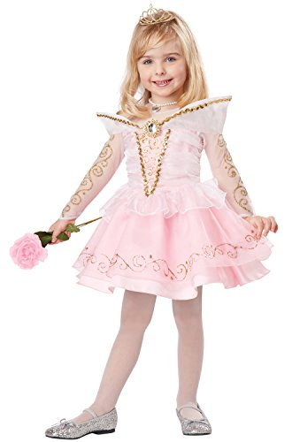 California Costumes Sleeping Beauty Deluxe Toddler Costume, 4-6