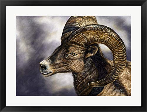 Desert Bighorn Sheep by Cory Carlson Framed Art Print Wall Picture, Black Frame, 32 x 25 ()