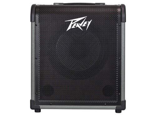 - Peavey MAX 100 100-watt 1x10