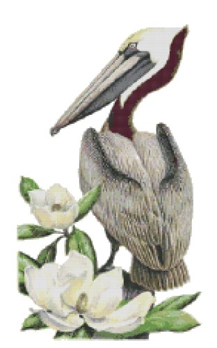 Louisiana State Bird (Brown Pelican) and Flower (Magnolia) Counted Cross Stitch Pattern