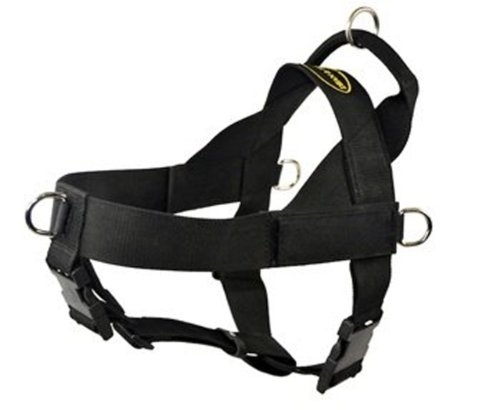 dean and tyler harness small - 4