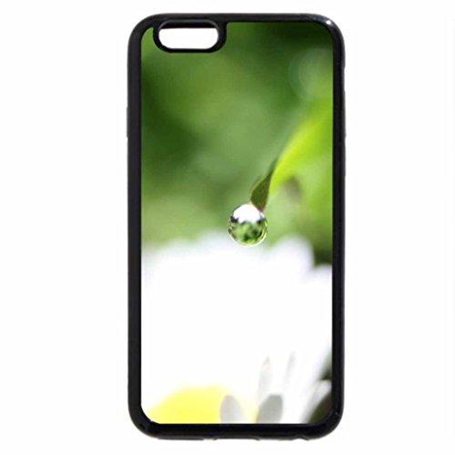 iPhone 6S / iPhone 6 Case (Black) Mornings dew drop