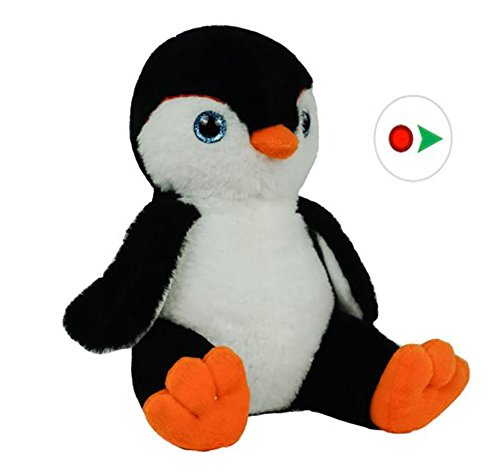 Record Your Own Plush 8 Inch Plush Penguin - Ready 2 Love in a Few Easy Steps from Bear Factory