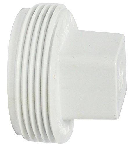 Canplas 193051S PVC DWV C/O Plug MPT, 1-1/2-Inch, White