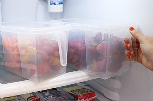 Refrigerator Organizer Container - Clear with Lid, Handle and 3 Smaller Bins - 2 Sets